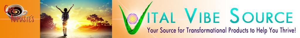 Vital Vibe Banner 3-14